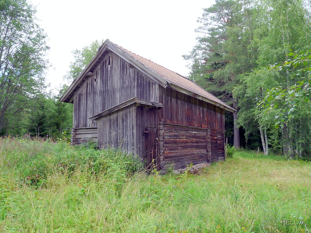 Old Mountain Pasture Barn  by HELUA