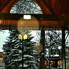 White Bear Lake, MN: Railroad Park in winter by ACImaging