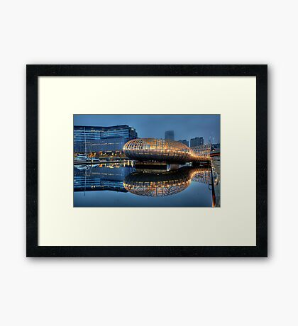 WEB BRIDGE Framed Print