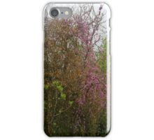 Colours Of A Cloudy Spring iPhone Case iPhone Case/Skin