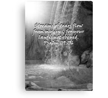 """Psalm 119:136""  by Carter L. Shepard Canvas Print"