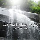 &quot;Let Your blessings, Oh God, fall on me.&quot;  by Carter L. Shepard by echoesofheaven