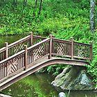 Bridge in forrest by DreamCatcher/ Kyrah Barbette L Hale