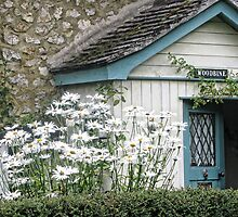Country Cottage.....Devon UK by lynn carter