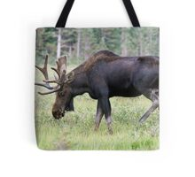 Long Lake moose Tote Bag