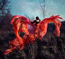 the phoenix hope; by melancholyellie