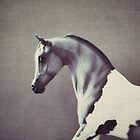 horse by beverlylefevre