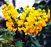 Yellow Flower by kendlesixx