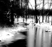 On A Winter's Day  by Joseph Noonan Photography