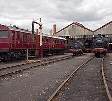 Didcot Main Engine Shed and Water Pumps. by Simon Lawrence