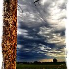 Dramatic Clouds with Dead Tree by reedonly