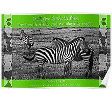 Zebras in Green Poster