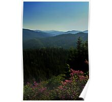 Summer In The Mountains Poster