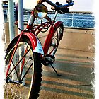 Red Bike by the Lake by reedonly