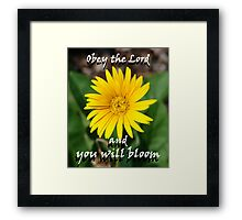 """Obey the Lord and you will bloom"" Color by Carter L. Shepard Framed Print"