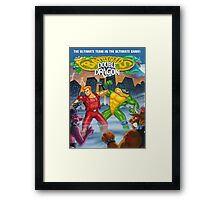 battletoads vs double dragon Framed Print