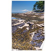 Gulf Islands National Park Reserve, British Columbia, Canada Poster