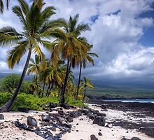 Storm clouds on a lava beach by fearonwoodphoto