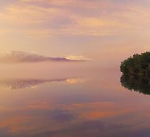 Dawn mist panoramic by Paul Mercer