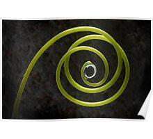Vine Spiral Poster