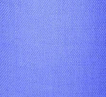 Blue Hessian by Paula J James