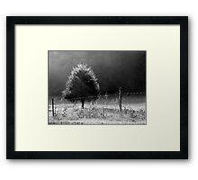 Morning Fog O'er Cow Pasture Framed Print