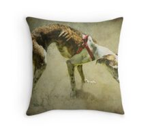 Rescued Greyhound Throw Pillow