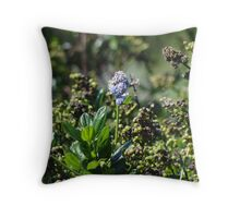 A tiny treasure by the sea Throw Pillow
