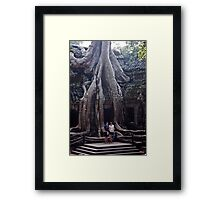 Takeover Framed Print