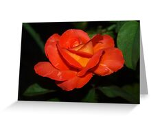 Uncommon color Greeting Card