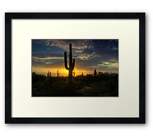 Pure Gold  Framed Print