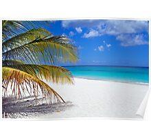 Caribbean beach. Poster