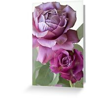 what a beauty!! Greeting Card