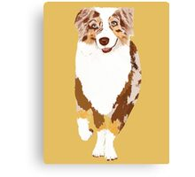 Running Red Merle Australian Shepherd Canvas Print