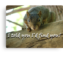 """""""I told you I'd find you!""""  by Carter L. Shepard Canvas Print"""