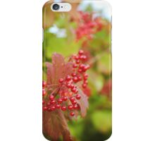 ~ red berries ~ iPhone Case/Skin