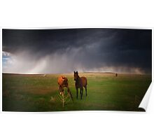 Horses In The Storm Poster