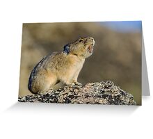 Hitting the High Note! Greeting Card