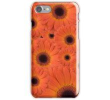 Orange Gerberas iPhone Case/Skin