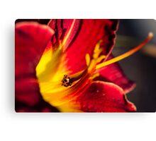 Lily and Ladybug Canvas Print