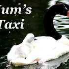 Mum's Taxi by Gordondon