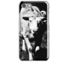 Sheep on the prowl iPhone Case/Skin