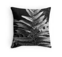 Ferns - an obsession with their beauty Throw Pillow