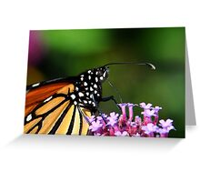 Monarch Tongue Greeting Card