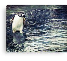 Contemplating Penguin Canvas Print