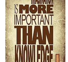Imagination is more important than knowledge by acepigeon