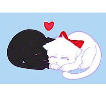 Kitty Love Photographic Print