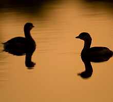 Sunset for Two by William C. Gladish