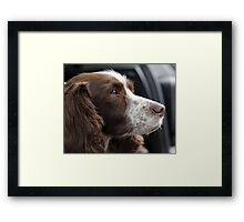 'Lost in thought'  Framed Print
