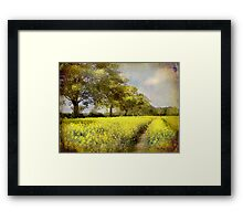 Follow Your Own Path Framed Print